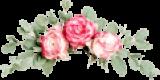 flowers-slider-txt-element.jpg.png
